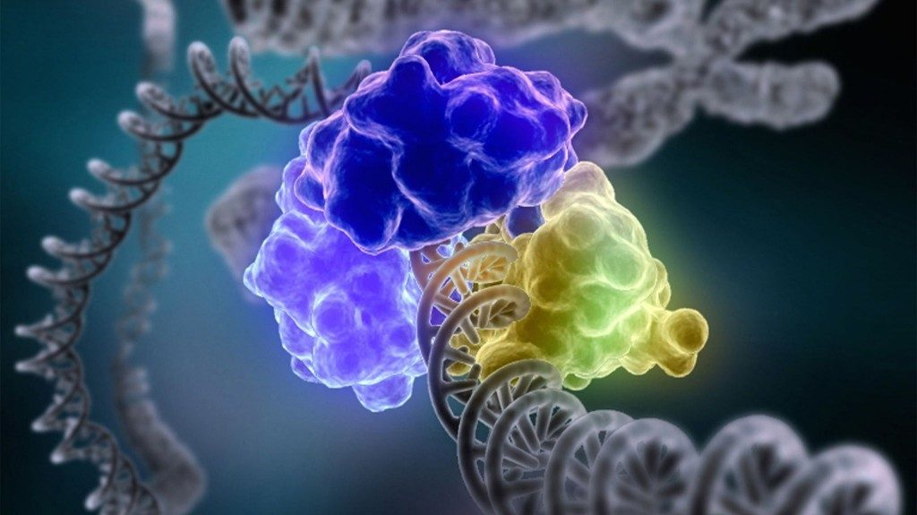 dna-repair-machinery-1024x575