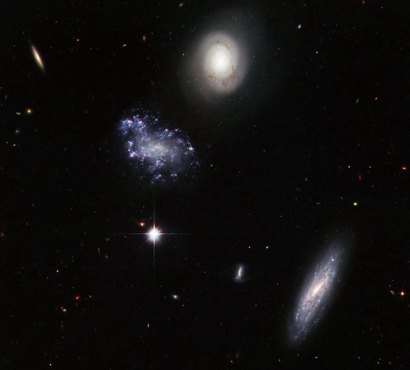 Galaxies Shapes